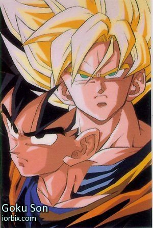 Goku Son